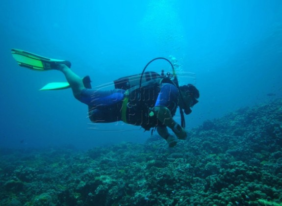 Diving in the Indian Ocean