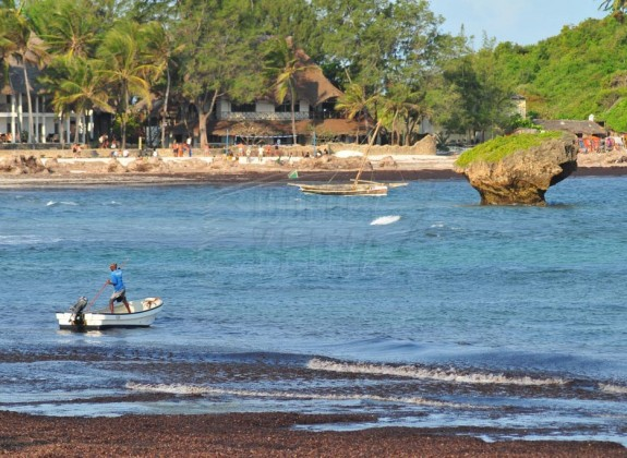 Beach in malindi