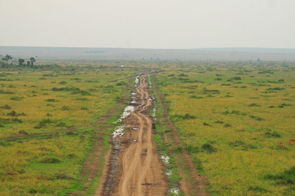 A road in Maasai Mara during the rainy season