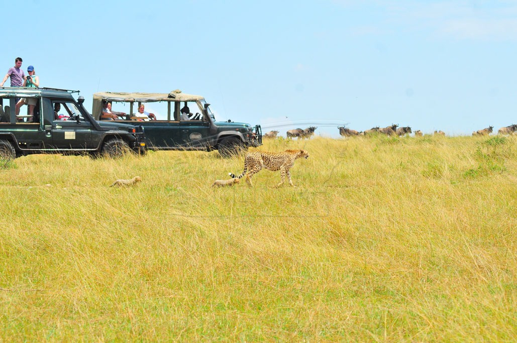 Tourists on the plains of Maasai Mara