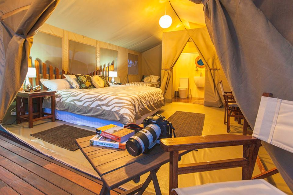 An elegantly furnished tent at Wildebeest Eco Camp Nairobi. Photo Credit: Wildebeest Eco Camp