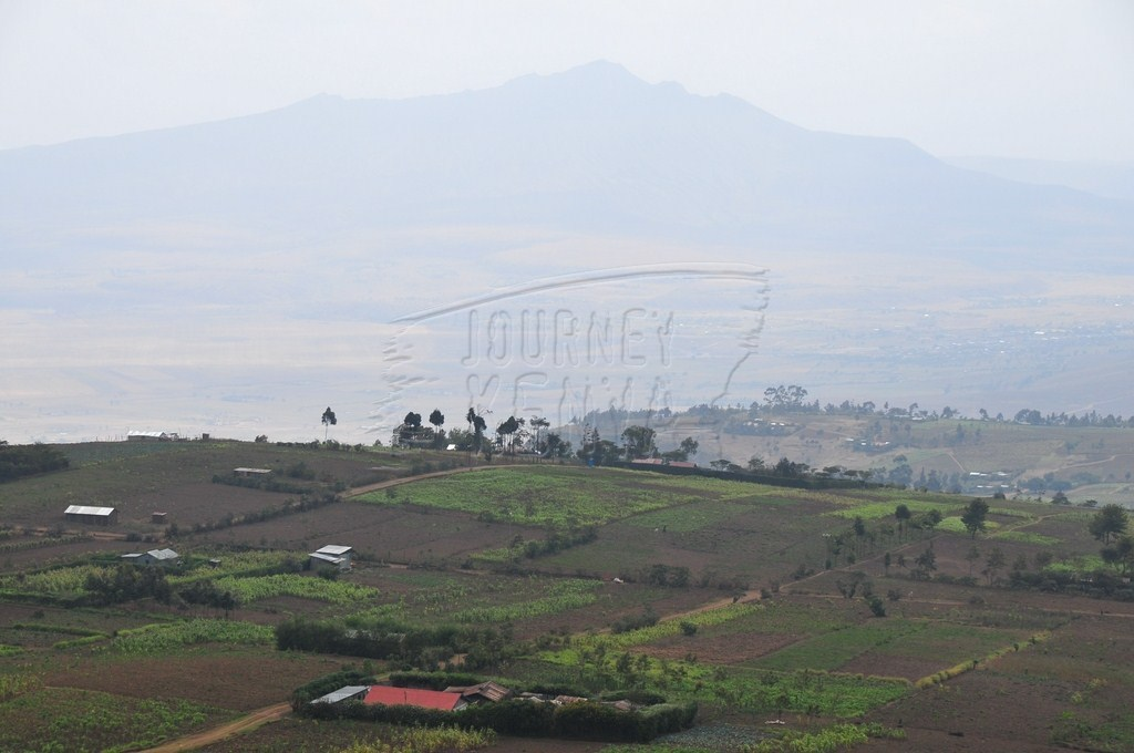 Farming Kenya