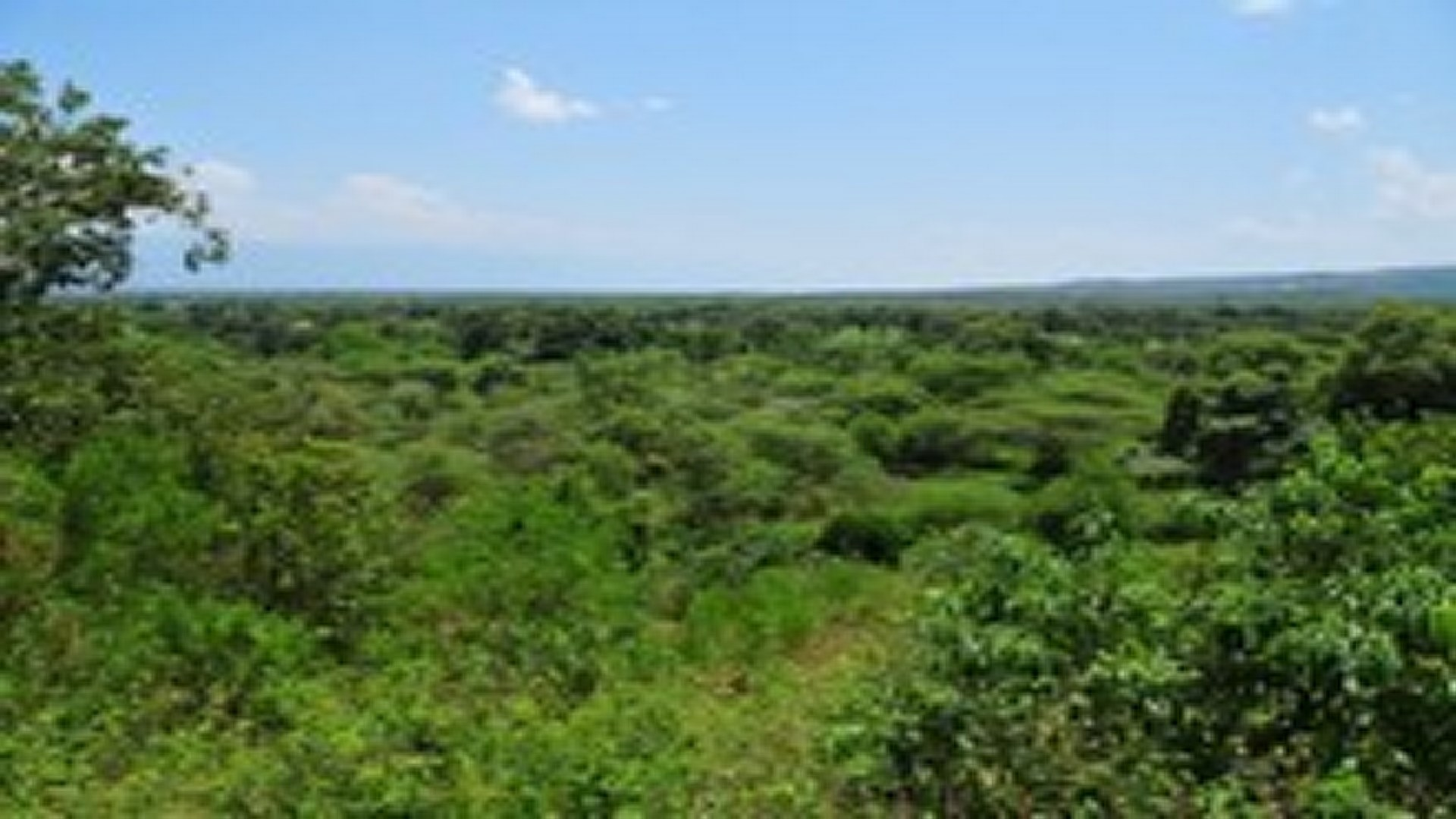 Northern Rift Valley