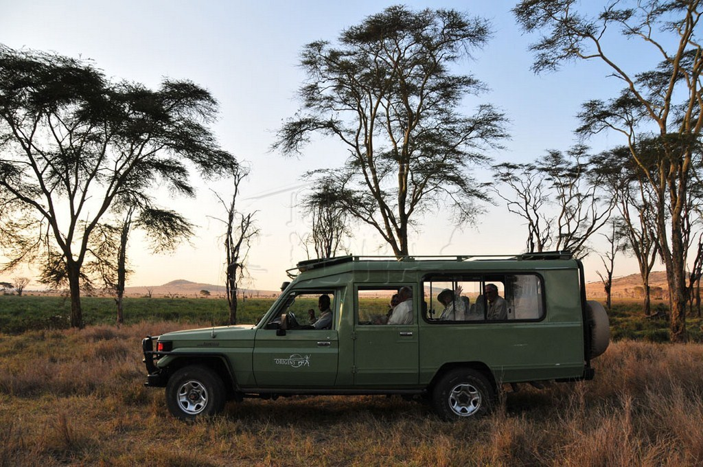 Tanzania East Africa Safari