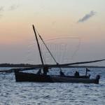Boat Safari at Zanzibar